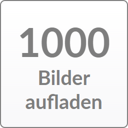 1000 Picture Credit